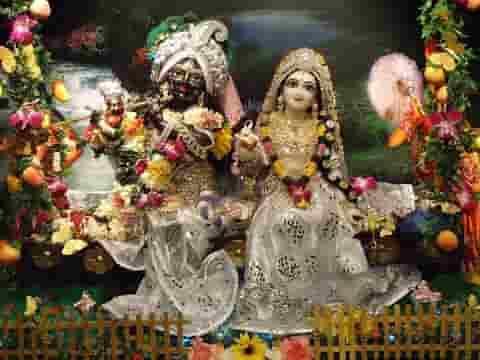 फूलों में सज रहे हैं श्री वृन्दावन बिहारी भजन लिरिक्स